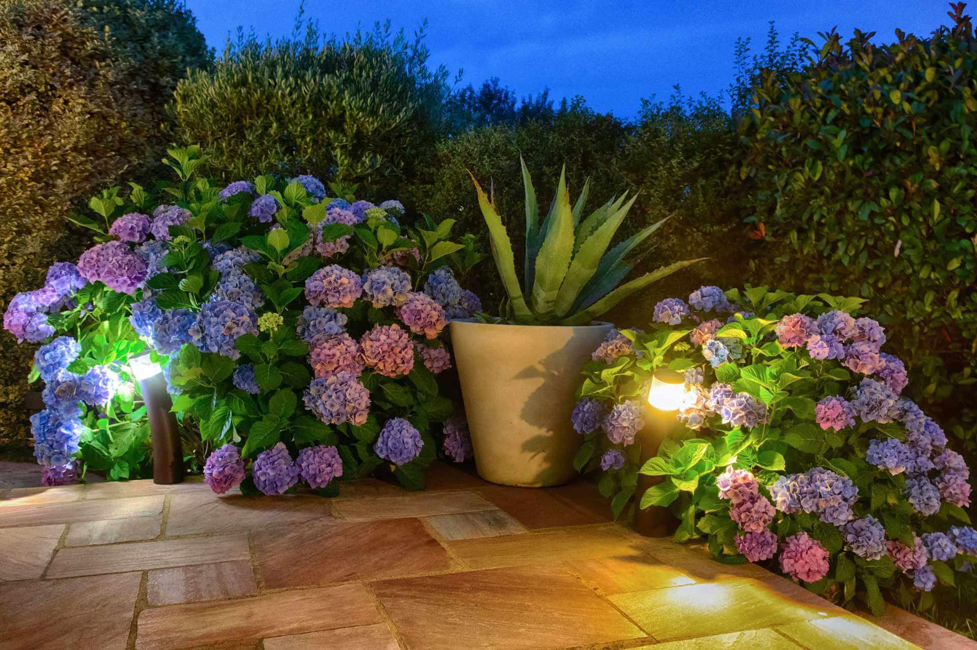 poterie décoration jardin